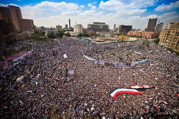tahrir2013